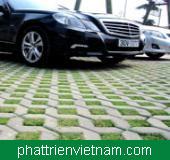 Gạch trồng cỏ lát sân xe hơi